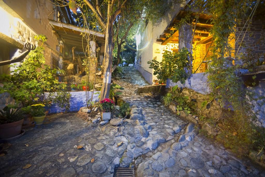 El Brazal. Camino principal de noche